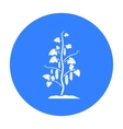 Cucumber icon black Single plant icon from the vector image