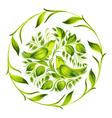 decorative circle green birds of paradise vector image vector image