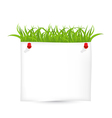 Paper sheet with green grass vector image
