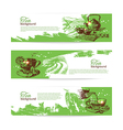 Set of tea vintage banners Hand drawn sketch vector image