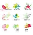 flower logo 4 vector image