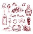 craft drink sketch elements set vector image