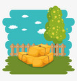 farming and agriculture hay bales icon vector image