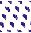 Purple burgundy and blue grape seamless pattern on vector image