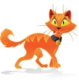 Pumpkin-orange Halloween cat vector image