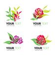 flower logo 5 vector image