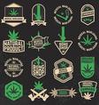 Set of cannabis marijuana bong shop labels badges vector image