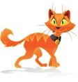Pumpkin-orange Halloween cat vector image