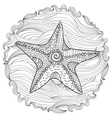 Starfish with high details vector image