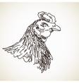 Sketch of hen vector image