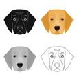 a dog breed a golden retrievermuzzle of the vector image