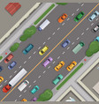 city road with cars with buildings grass vector image