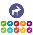 deer icons set flat vector image