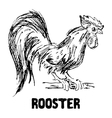 Rooster or cock bird Hand drawn sketch vector image