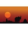 Rhino silhouette walking in savanna vector image