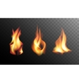Realistic Fire Flames on a Transparent Background vector image