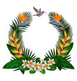 tropical round composition vector image