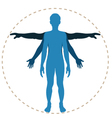 body structure vector image