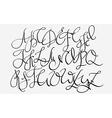 Handwritten pointed pen flourish font vector image