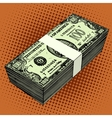 bundle of hundred-dollar bills vector image