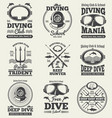 scuba diving vintage labels spearfishing vector image