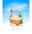 nature background with summer flowers in basket vector image vector image