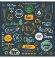 Set of hand drawn bio organic eco product logos vector image
