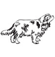 decorative standing portrait of dog cavalier king vector image