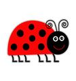 Cute cartoon lady bug Isolated vector image