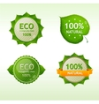 Eco green Labels vector image