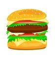 Hamburger food closeup vector image