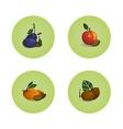 Plum Peach Apricot Kiwi Fruits Icons Set vector image