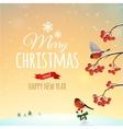 Christmas greeting card poster vector image