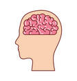 human face silhouette with brain inside in vector image