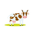funny cow isolated icon vector image