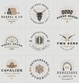 Set of Hipster Vintage Labels Logotypes Badges for vector image