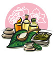 spa products vector image
