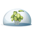 A green plant inside a round cystal vector image vector image