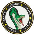 snake coat of arms vector image