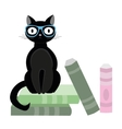 Black cat with glasses and books vector image