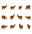 Alpaca and llams emblems collection vector image