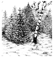 Winter forest Black and white hand darwn landscape vector image