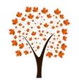 Autumn maple tree vector image
