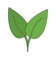 green leaf ecology symbol vector image
