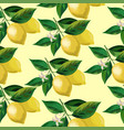 lemon seamless background vector image