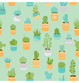 Succulents vector image