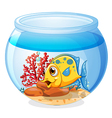 A jar with a fish vector image vector image