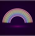neon tubes rainbow vector image