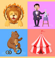 trained lion magician bear on bicycle vector image