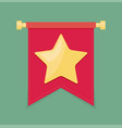 gold star on the flag icon vector image